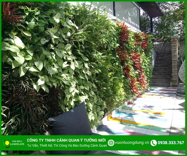 Hình ảnh tường cây xanh 4